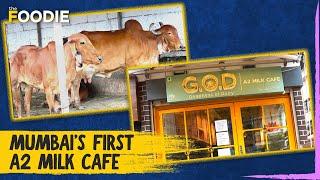 Mumbai's First A2 Milk Cafe | …