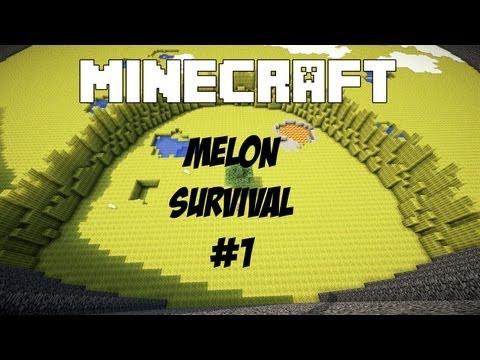 Melon Survival - Deel 1 - Huisje Bouwen!