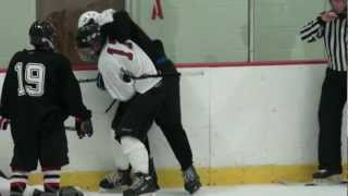 Hockey Mom Runs Out On Ice During Hockey Fight