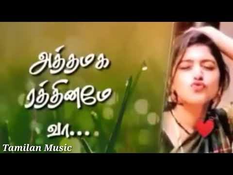 New Cut Love Gana Whatsapp Status Video Song In HD Tamilan Music