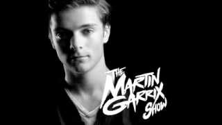 Download Martin Garrix Animals Wizard Mix (featuring Jay Hardway) MP3 song and Music Video