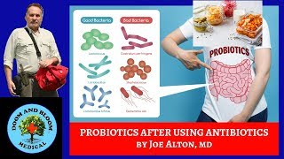 Why You Should Take Probiotics After Antbiotics