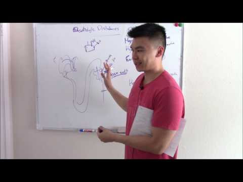 USMLE Renal 7: Electrolyte Disturbances Explained (Sodium, Potassium, and more!)