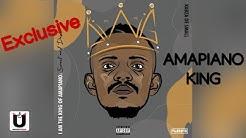 Why Ngikufela (Official Audio) | Kabza De Small ft Sha Sha, Dj Maphorisa