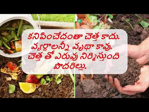How to do wet and dry  Waste Segregation at home in Telugu (swachh bharat)