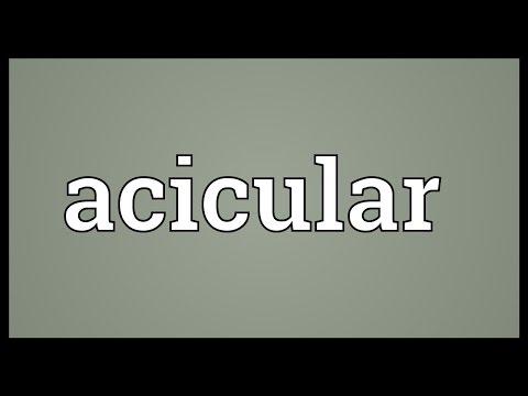 Header of acicular