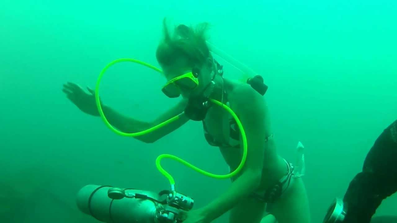 Monkey scuba diving