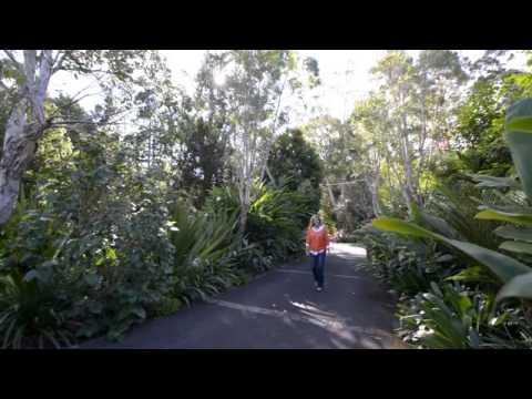Australia's best gardens   Secret Gardens