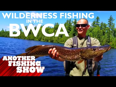 Pristine Fishing In The BWCA Of Northern Minnesota