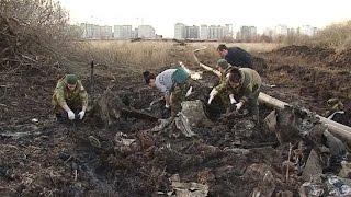 На юге Самары обнаружили Ил-2 времен ВОВ и останки пилота