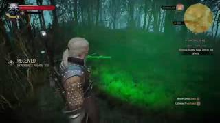 The Witcher 3: Wild Hunt [Story and Sword] - Part 14 | 0 Quests Completed, 1 Death
