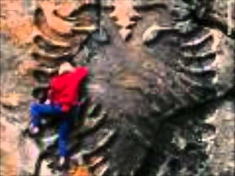 Muzik shqip 3 Valle Dasmash 2011 - YouTube