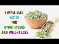 Fennel Seed Water for Hypothyroid and Weight Loss - Update || Indian lifestyle Guide