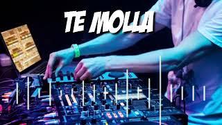 Download Lagu Dj Te Molla viral 2020 mp3