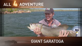 Huge Northern Saratoga action on Groote Eylandt ► All 4 Adventure TV