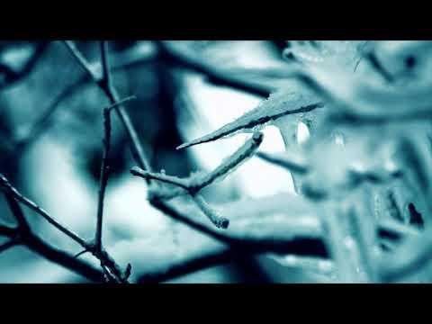 Liquid Mind V: Serenity