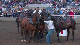 #Calgary Stampede chuckwagon races