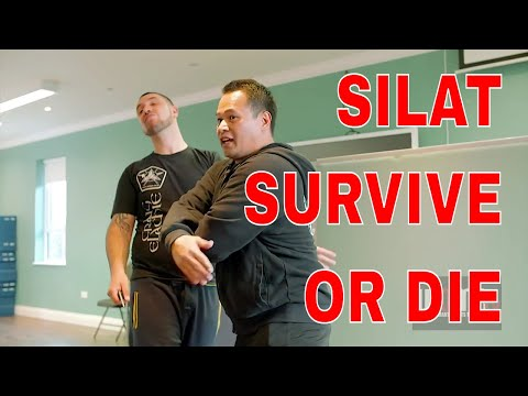 SURVIVE OR DIE SILAT