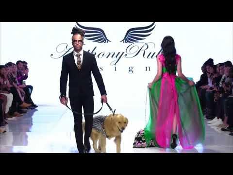 Anthony Rubio On MSN News Latino! LA Fashion Week - Dog Fashion + Women's Wear