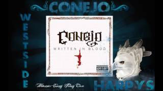 Watch Conejo Ski Mask Boy video