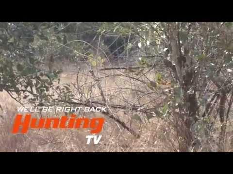 Barnes Bullets Tanzania Hunt Part 1