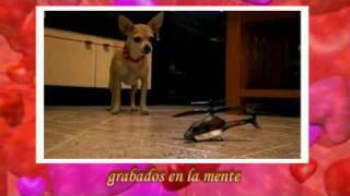 Eros Rmazzotti - una emocion para siempre(Lyrics in Spanish)