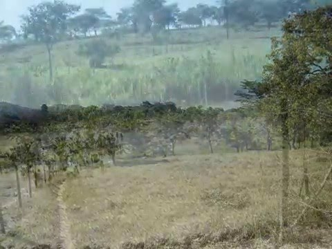 2 hectares de terra podem ser seu... em Fortuna de Minas