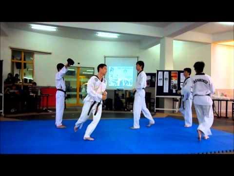 Nottingham Uni Malaysia Taekwondo Interactive Demo 2011