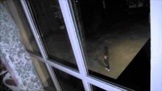 Паранормальное явление 4 - Трейлер (дублированный) 1080p