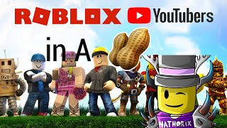 Roblox Youtubers In A Nutshell   Nathorix