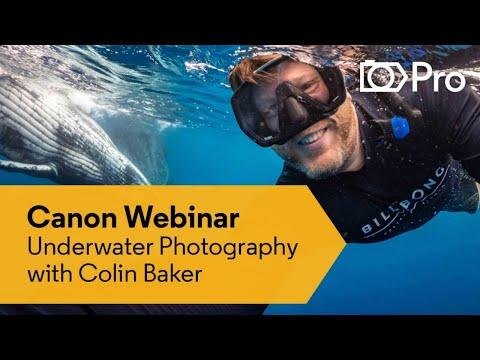 Webinar: Underwater Photography Q&A With Colin Baker - Canon Australia | CameraPro Australia