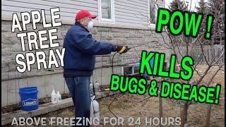 Dormant spray for apple trees