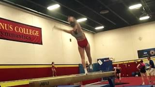 Ursinus Gymnastics Preseason 2013-2014