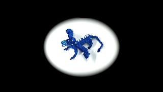 Part 1/4 Rainbow Loom Saphira from Eragon, Baby