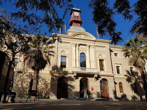 Consell Plenari Districte Sant Martí 25/07/2019