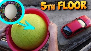 NEW EXPERIMENT! WHAT IF TO THROW DOWN AN OSTRICH EGG IN THE BALLOON FULL OF ORBEEZ!?