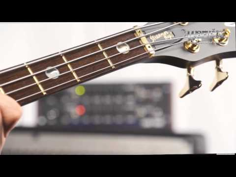 The Warwick Streamer Stage II - product demo with Andy Irvine