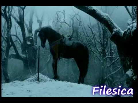 Horses ~ Bittersweet Symphony