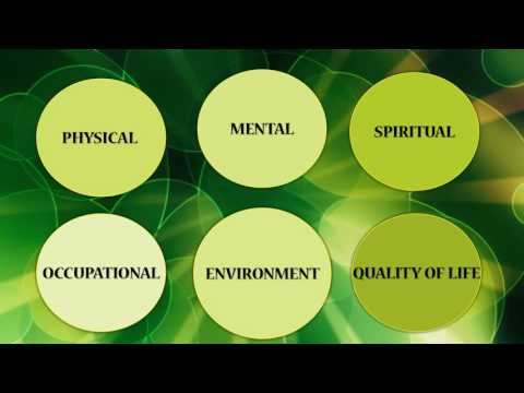 9 Dimensions Of Holistic Wellness