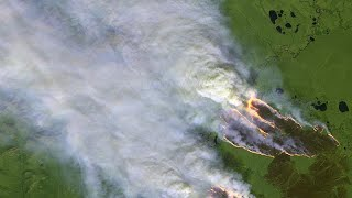 'Low chance' Siberia wildfires will be brought under control: Greenpeace fire expert