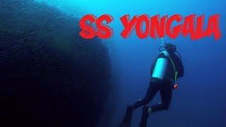 SS Yongala, Australia MOST INCREDIBLE DIVE SITES!