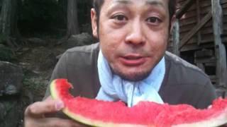 2011 えろちゃん 稲垣実花 動画 7