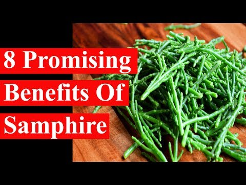 6 Promising Benefits Of Samphire | Health Benefits - Smart Your Health