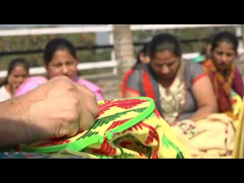 Handicraft Department, is examining skill development for remote girls and women across State