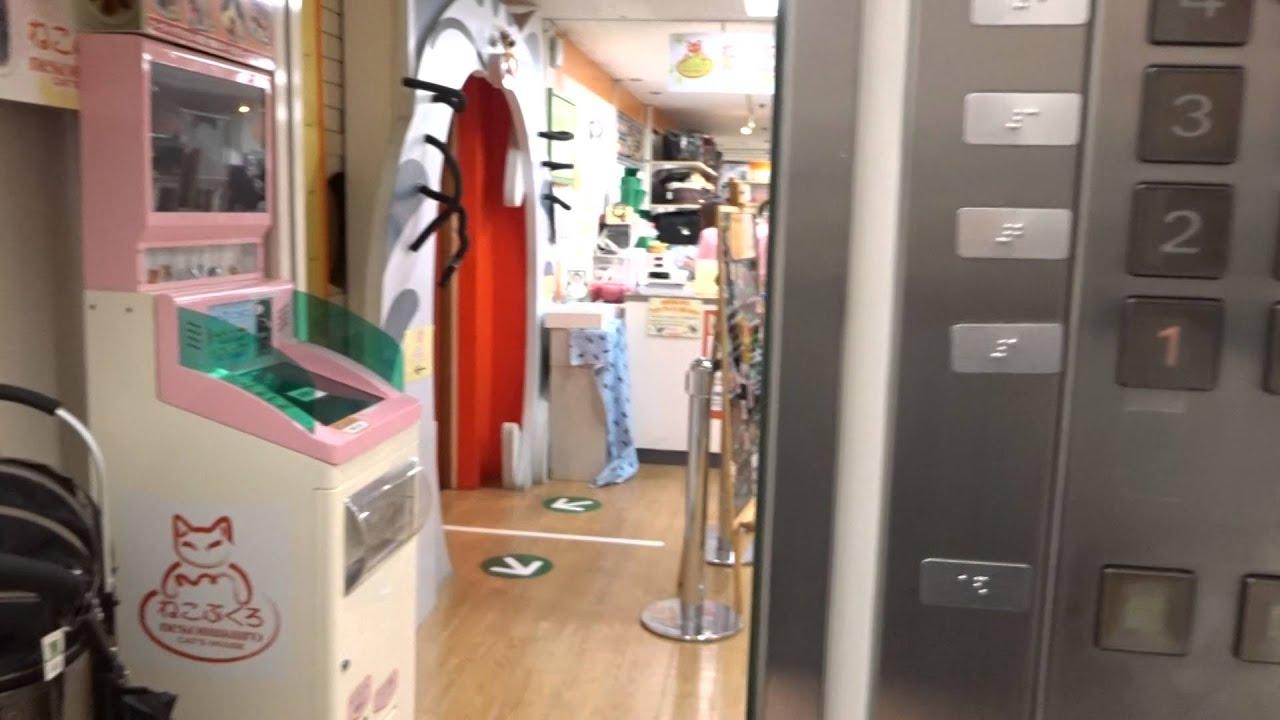 3x Amazing Old 1984 Mitsubishi Tr  Elevators@Tokyu Hands Ikebukuro Store,  Ikebukuro, Toshima, T, JP