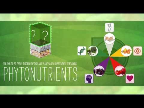 Video Dưỡng Chất Thực Vật (Phytonutrient)