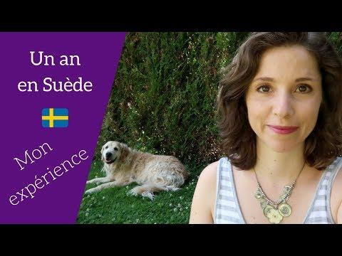 Un An En Suède - Mon Expérience ! Pourquoi ? Comment ? Fini ?