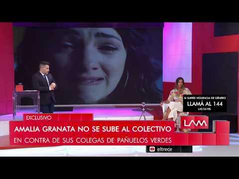 'El colectivo de actrices me parece todo un circo', Amalia Granata disparó contra sus colegas