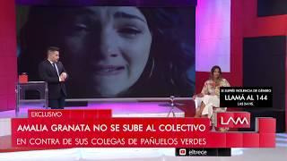 """""""El colectivo de actrices me parece todo un circo"""", Amalia Granata disparó contra sus colegas"""