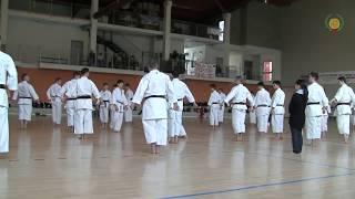 Masao Kagawa Sensei Jks Seminar Kata Unsu